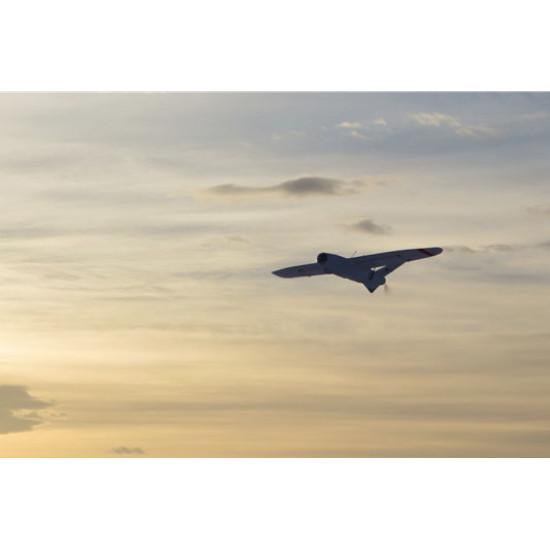 Talon (1.700mm) FPV/UAV Platform PnP